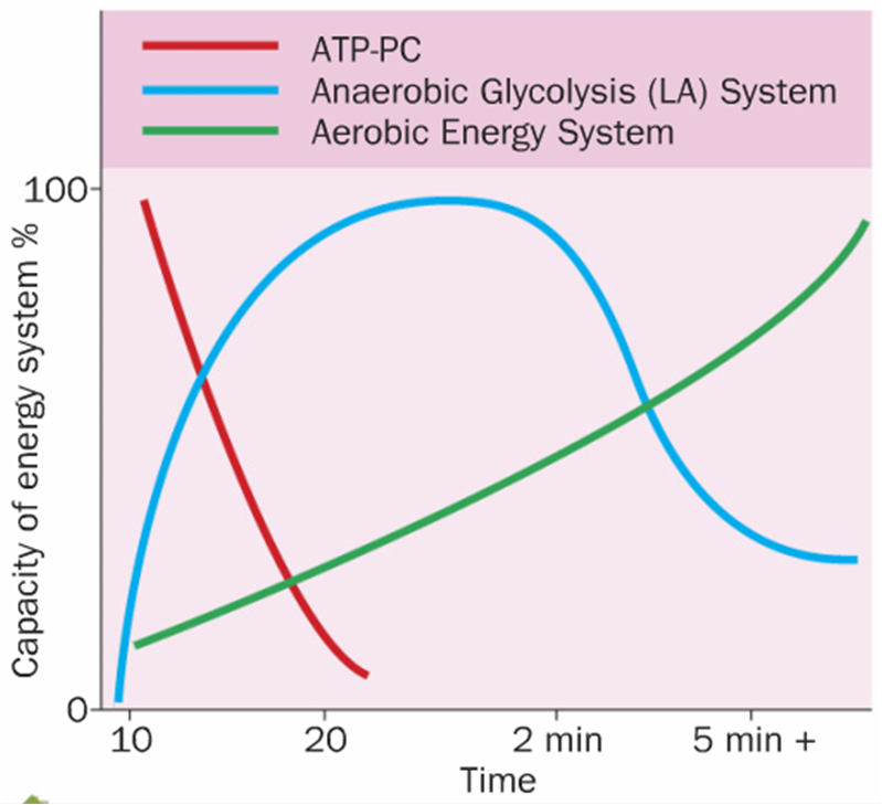 A2 PE Energy Continuum null